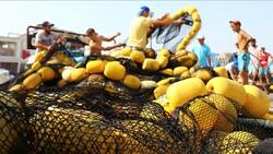 Tekirdağlı balıkçılar lüfer ve palamuda hazırlanıyor