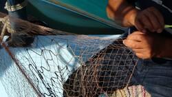 TZOB Başkanı Bayraktar, balıkçılıkta av sezonu başlarken kuralları hatırlattı