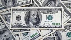 Dolar OVP'den sonra kritik seviyenin altında