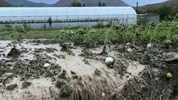 İklim değişikliği tarımda hasarı artıracak