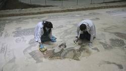 Şanlıurfa Arkeoloji Müzesi'nde nadide eserlere hassas koruma