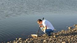 Van'da artan balık ölümleri incelemeye alındı