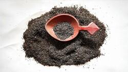Türkiye'den 8 ayda 11.9 milyon dolarlık çay ihraç edildi