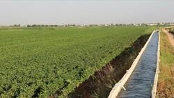 Çiftçi tarımsal sulama elektriğinde vergi indirimi bekliyor