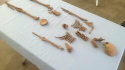 Kahramanmaraş'ta 600 yıl öncesine ait olan çocuk iskeleti tespit edildi