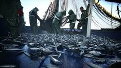 Hataylı balıkçıların av mesaisi başladı