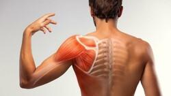 Kas ağrılarına iyi gelecek 13 doğal yöntem