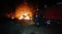Manavgat'ta başlayan yangın kontrol altına alındı