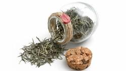 ÇAYKUR: Çayda verim iyi, beyaz çay ise çok toplanamadı