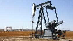 Hatay, Adana, Osmaniye'de petrol arama süreleri uzatıldı