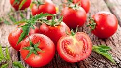 Çürüyen domatesleri sakın çöpe atmayın! Konserve, salça, maske, fide…
