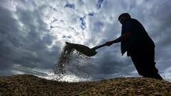 Tarımsal desteklerde vergi iadesiyle 2 milyon çiftçiye 5 milyar lira ödenecek