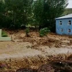 Bingöl'de sel ev ve ekili alanlara zarar verdi