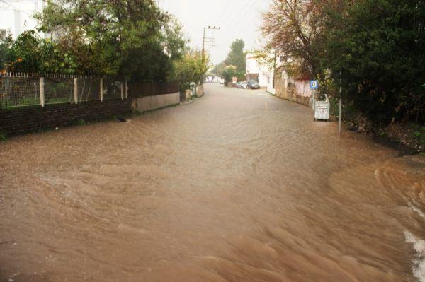 Bodrum'da yine sel: Vatandaşlar isyan etti