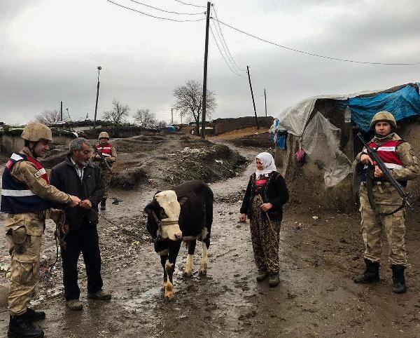 Diyarbakır'da inek hırsızlığına 3 gözaltı