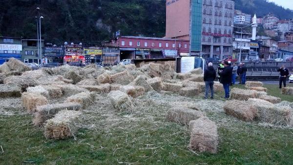 Trabzon'da saman yüklü kamyon devrildi