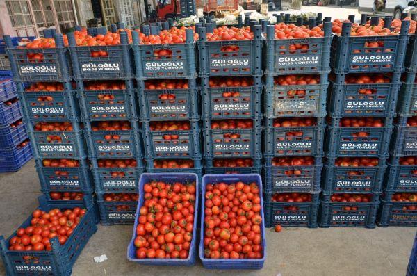Adana'da domates ve salatalığın kilosu 1 liraya düştü