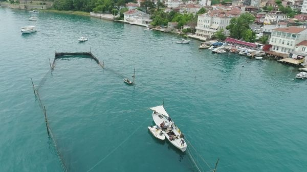 İstanbul'un son dalyanı