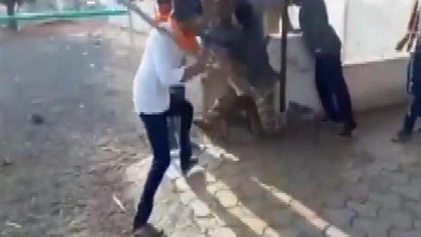 Hindistan'da 'sığır eti' taşıyan Müslümanları dövdüler
