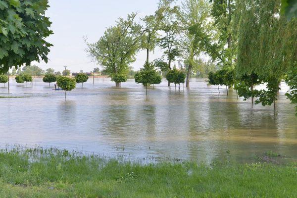 Polonya'da aşırı yağışlar nehirleri taşırdı