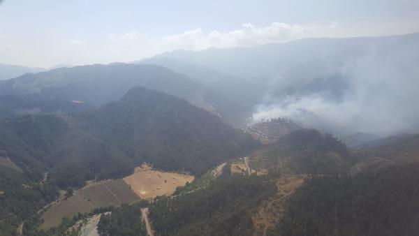 Kahramanmaraş'ta ormanlık alanda yangın çıktı