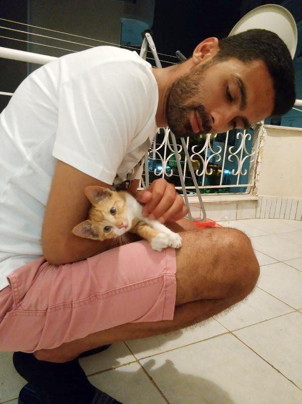Kedisinin kaybolmasından sorumlu olanlardan şikayetçi oldu