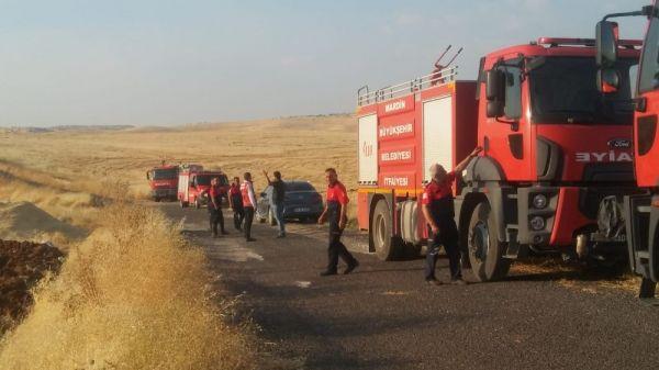 Mardin'de 600 dönümlük alan kül oldu