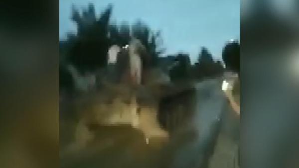 Polonya'da alkollü şahıs T-55 modeli tankla gezdi