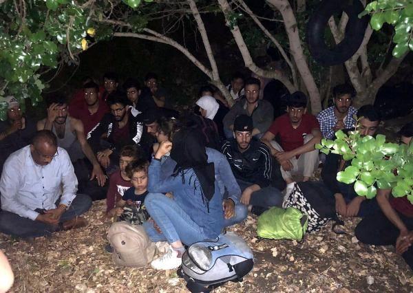 Aydın'da 107 kaçak göçmen yakalandı