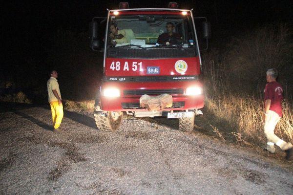 Bodrum'da makilik ve otluk alanda yangın çıktı