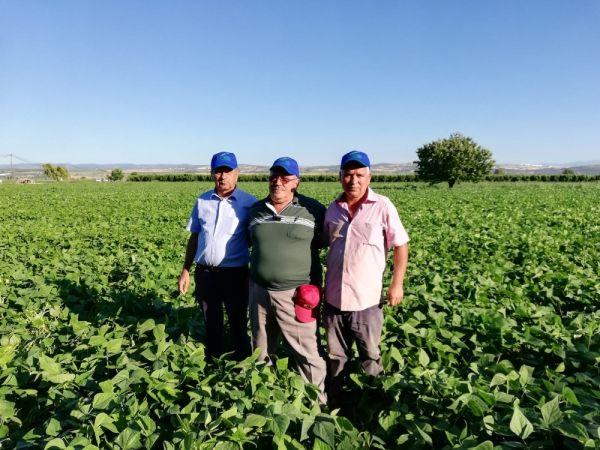 Bursa'da fasulyeden kazanan çiftçilerin mangal partisi