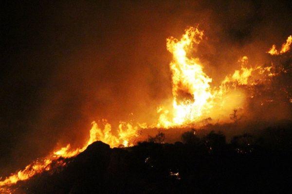 Muğla'da bu sefer Bodrum'da yangın çıktı