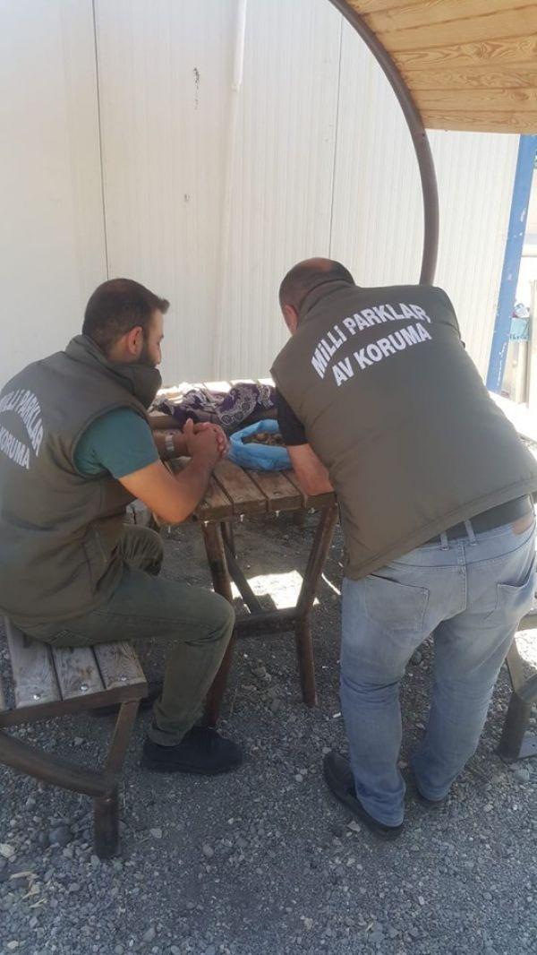 Salep soğanını toplayanlar 60 bin TL'lik cezadan kaçamadı