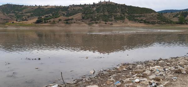 Altınkaya Baraj Gölü'nde toplu balık ölümleri