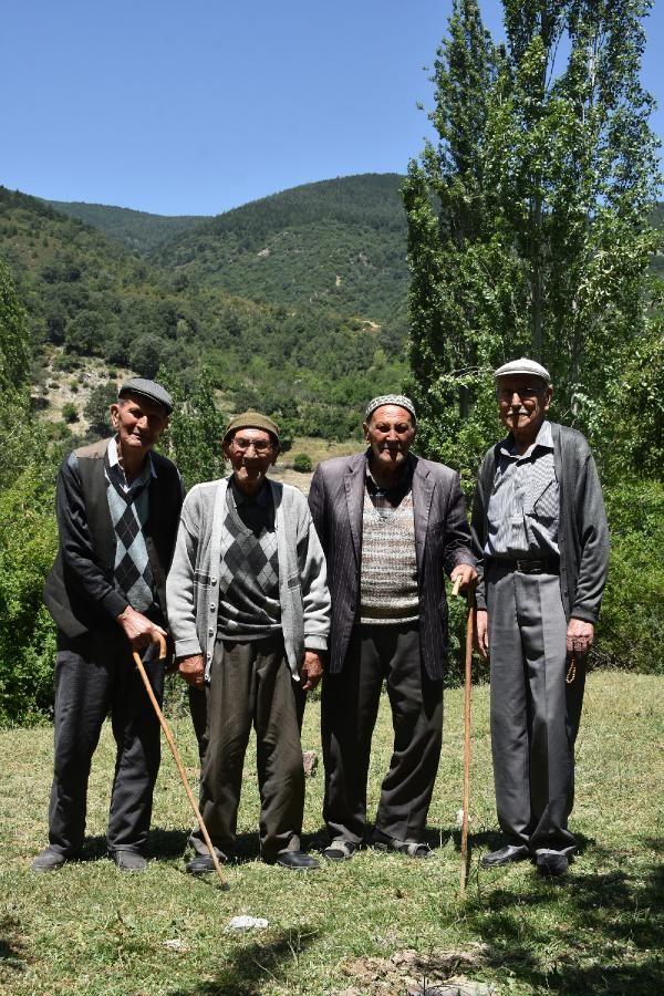 Kıraç toprakları yemyeşil ormana çeviren 5 kardeş