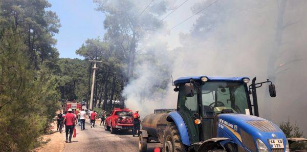 Alev alan araç, orman yangınına neden oluyordu