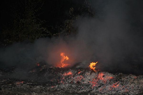 Kastamonu'da orman yangını büyümeden söndürüldü