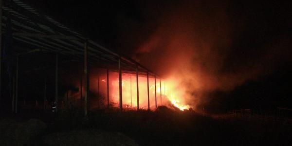 Bursa'da çiftlik yangınında 2 bin balya saman kül oldu