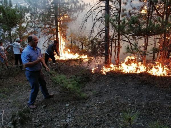 Eskişehir'de orman yangını söndürüldü