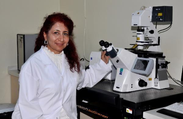 Karaciğer kanserinin tedavisinde yapay zeka kullanılacak