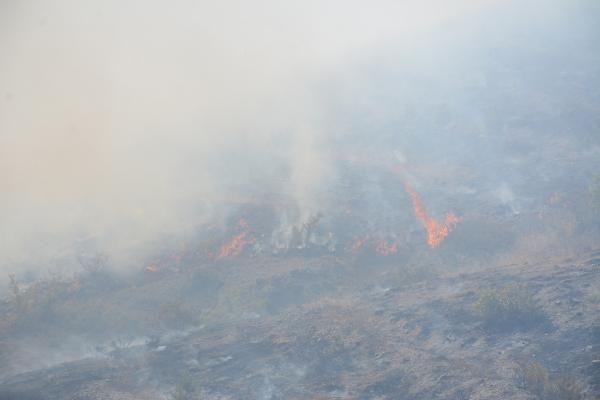 Tokat'taki yangında 7 dekar fidanlık zarar gördü