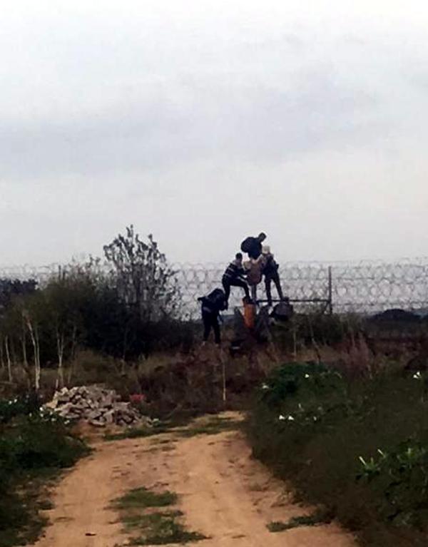 Yunanistan'a kaçmak isteyen göçmenler tellerde yakalandı