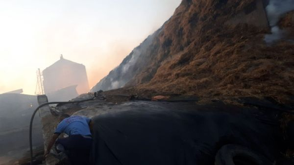 Gaziantep'te 100 bin hayvanın bulunduğu çiftlikte yangın