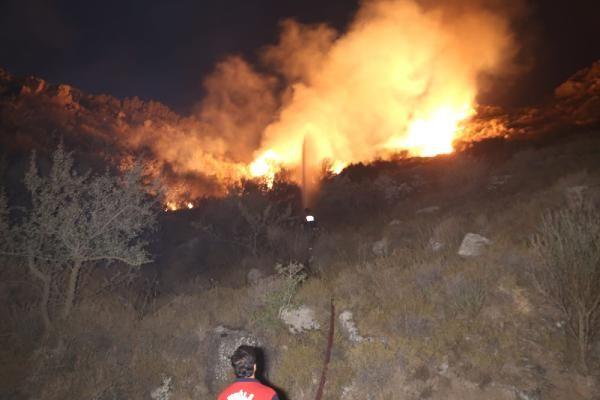 Muğla'nın Bodrum ilçesinde makilik alanda yangın çıktı