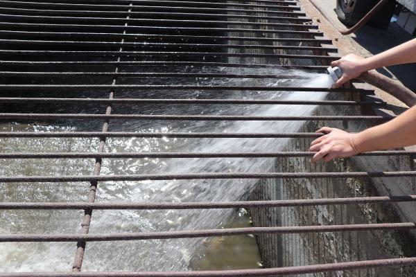Edirne'de ölmek üzere olan balıkları itfaiye kurtardı