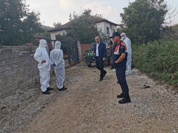 6 bin tavuk ölüsünün bulunduğu mahalle karantinaya alındı