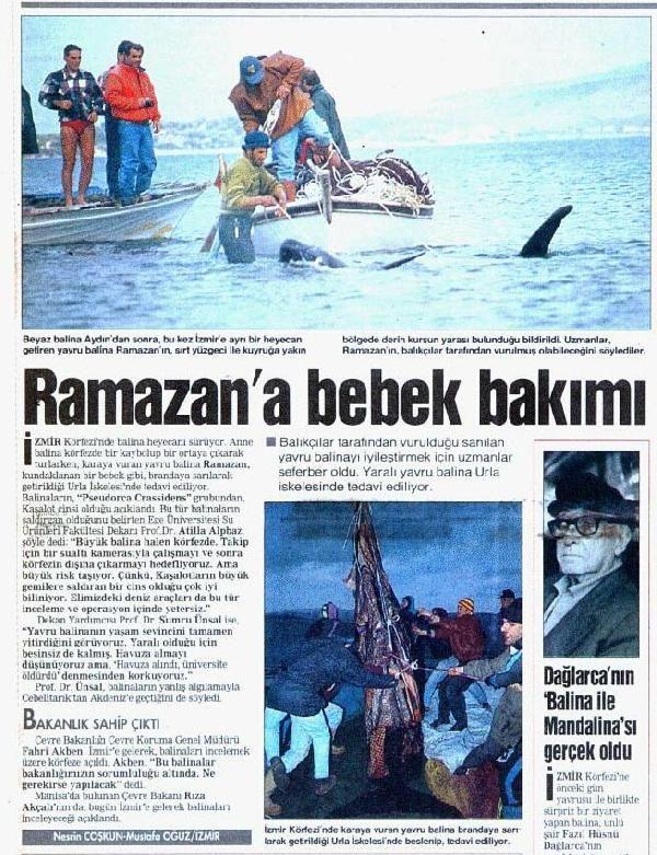 Alaçatı açıklarında balina heyecanı