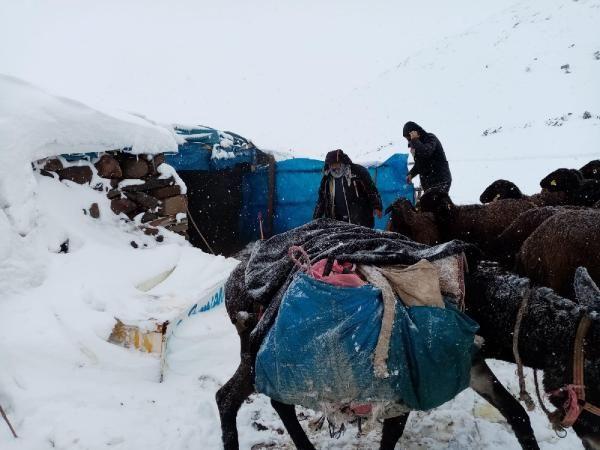 Karlıova'da mahsur kalan 2 bin 500 koyun kurtarıldı -4