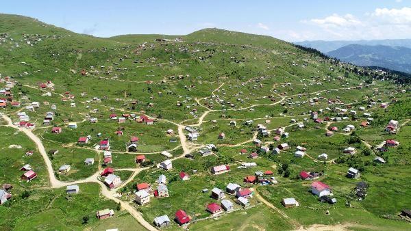 Trabzon'da 160 kaçak yapı yıkıldı -3