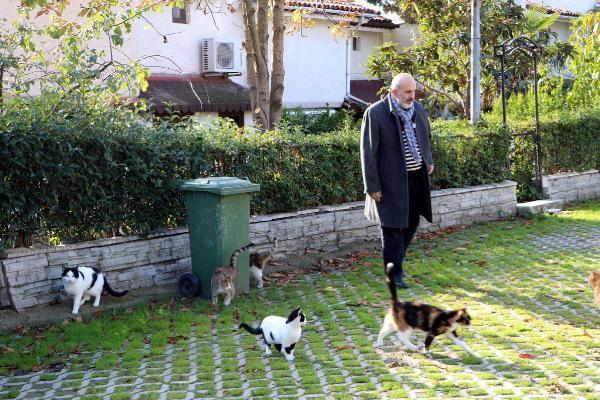 Natalia'nın kedilerini zehirlediler -3